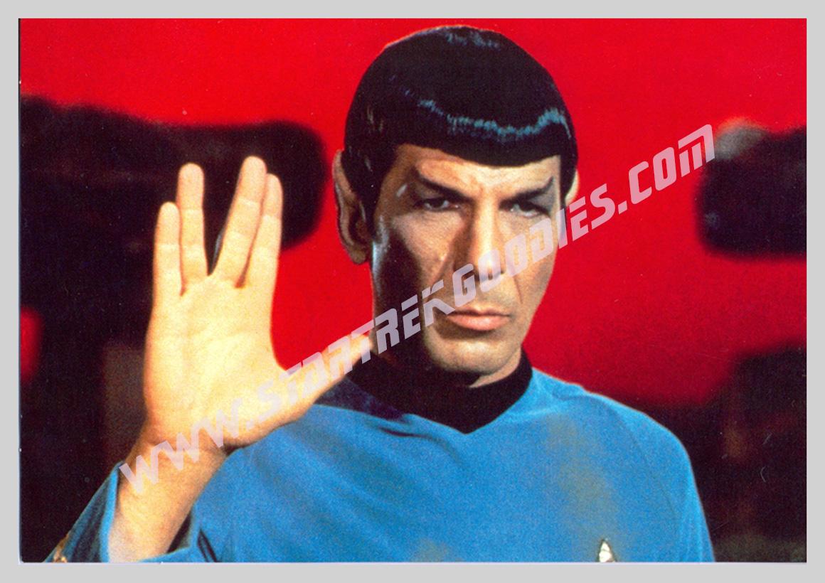 mr spock priestly blessing